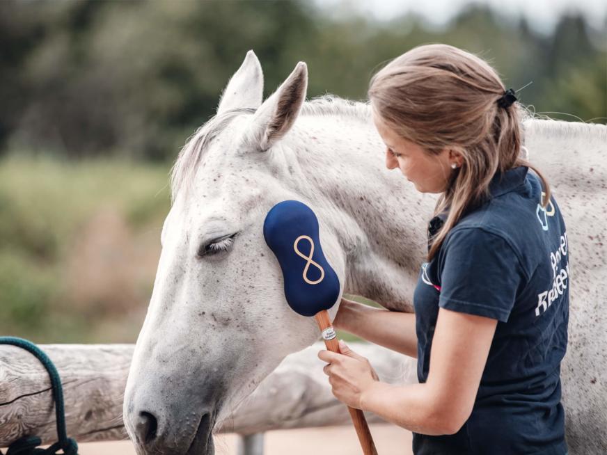 Power Redeemer Horse